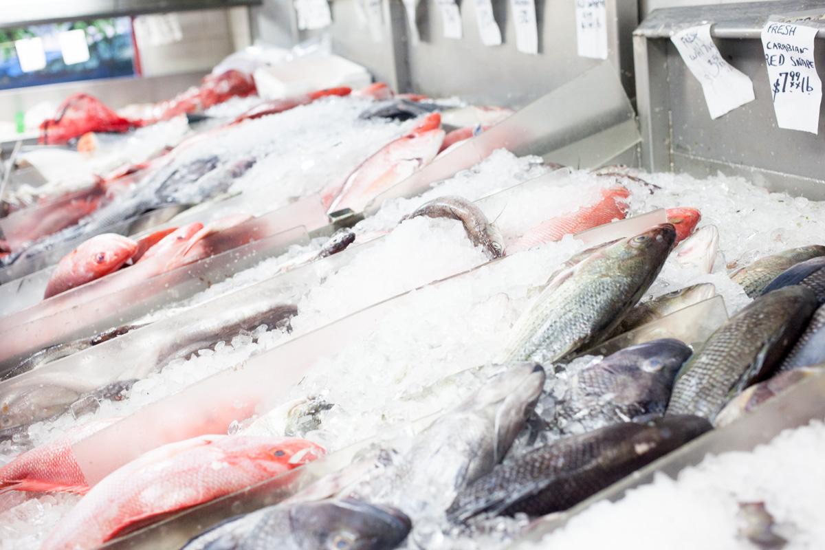 astoria-seafood-robertiaga-5