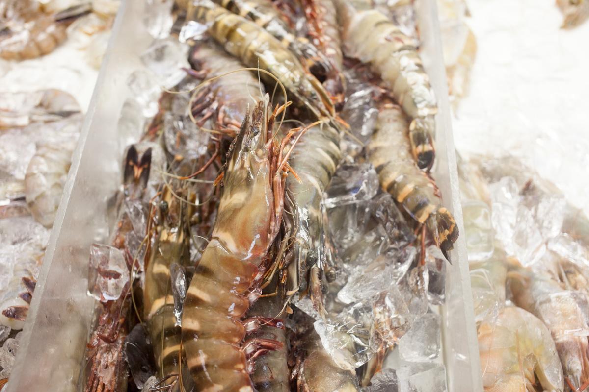 astoria-seafood-robertiaga-6